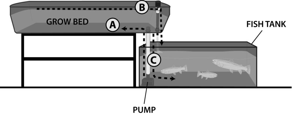Ebb and Flow DrainThroughPump