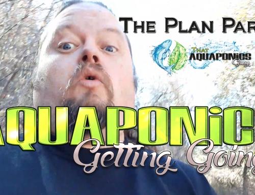 Planning Your Backyard Aquaponics System Part II
